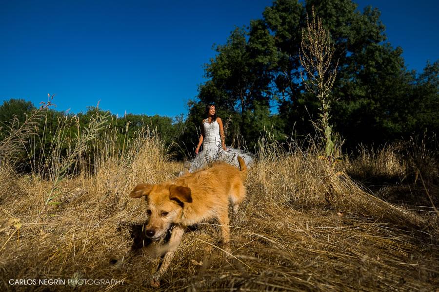 fotógrafo de bodas en coruña, Carlos Negrín Photography J+AP